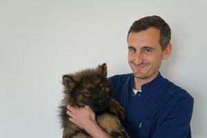 docteur loup